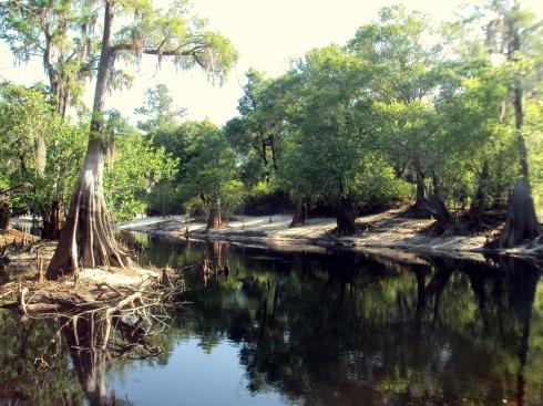 Suwanee River