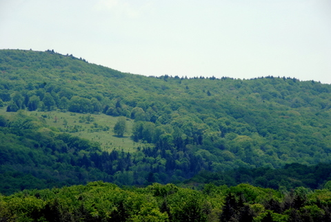 West Virginia landscape