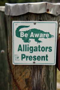 Alligators Present sign