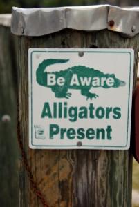 Alligators Present sign