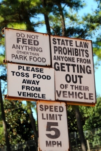 Picture of a Sign: Do not feed anything other than park food