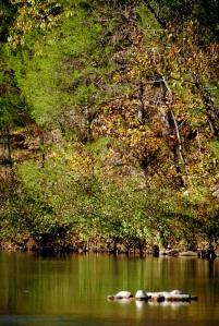 Buffalo National River low Water Level