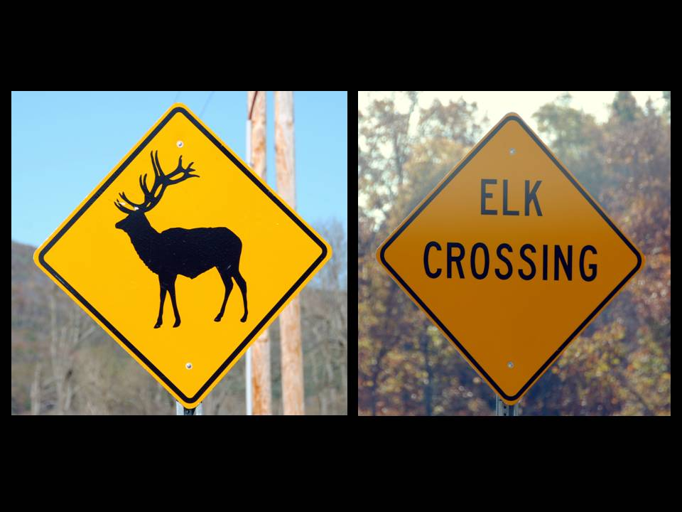 Elk Crossing Signs
