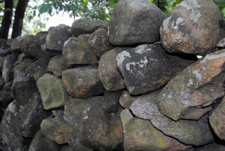Stone fence in Rhode Island