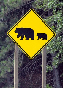 Bear and cub crossing sign