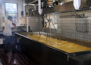 Making Cheese at Shelburne Farms