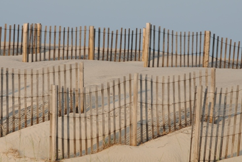 Sand dune fences on the Outer Banks