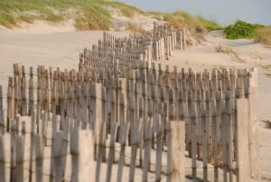 Fences on the sand dune at the Outer Banks NC