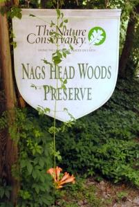 Nags Head Preserve sign