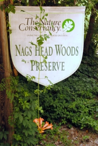 Nags Head Preserve sign